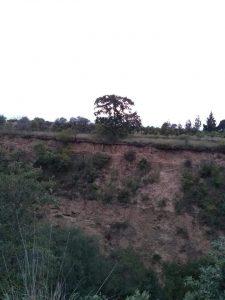 Se advierten diferentes capas de tierra en el talud de esta barranca que está en San Salvador El Verde y que es una de tantas que de manera radial bajan de La Iztaccihuatl y que se formaron hace muchos millones de años.