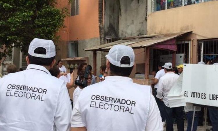 ine eleccion observador electoral
