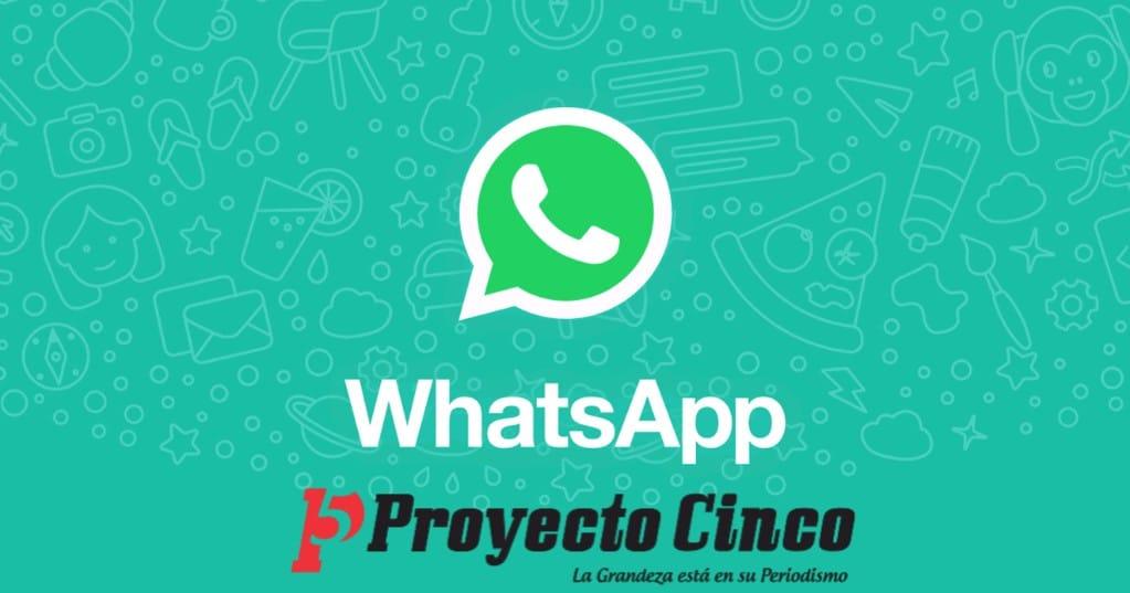 whatsapp proyectocinco